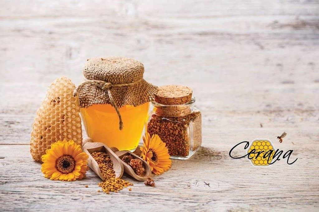 cerana honey wedding favour
